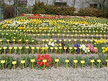 De Vroomen quality control test garden