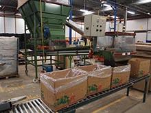 Packing bulk boxes of Perennials